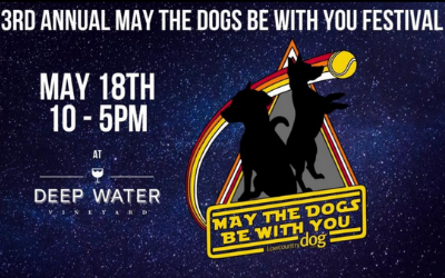 May the Dogs Be With You Festival