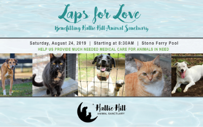 Laps for Love