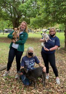Bishop England High Schoolers at Hallie Hill Animal Sanctuary